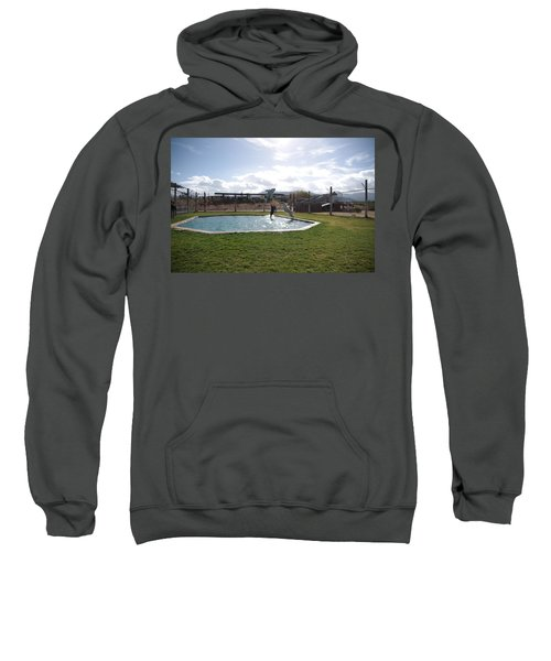 Out Of Africa  Tiger Splash 5 Sweatshirt