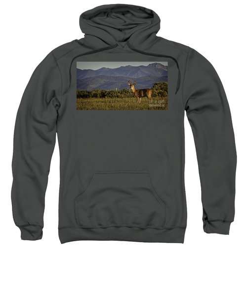 Out West Sweatshirt