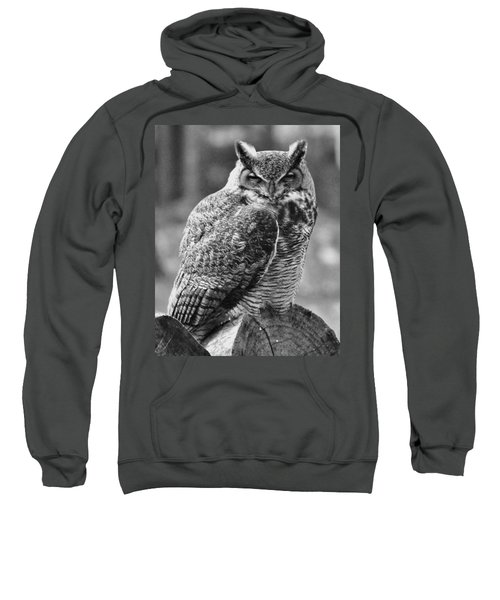 Owl In Black And White Sweatshirt
