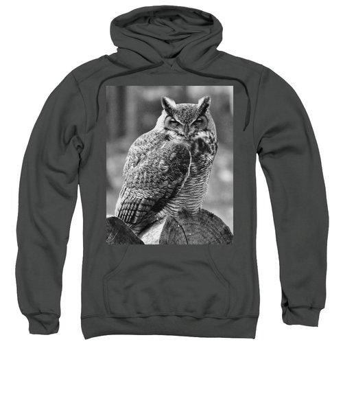Owl In Black And White Sweatshirt
