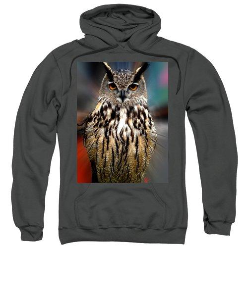 Owl Living In The Spanish Mountains Sweatshirt
