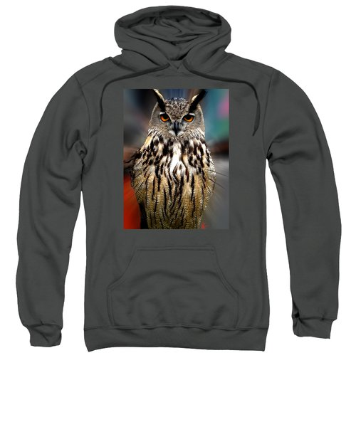 Owl Living In The Spanish Mountains Sweatshirt