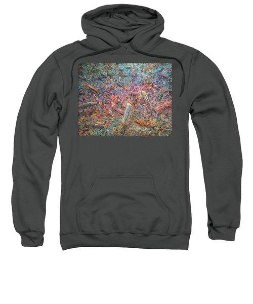 Paint Number 37 Sweatshirt