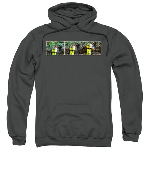Painted Bullfinch Trio Sweatshirt