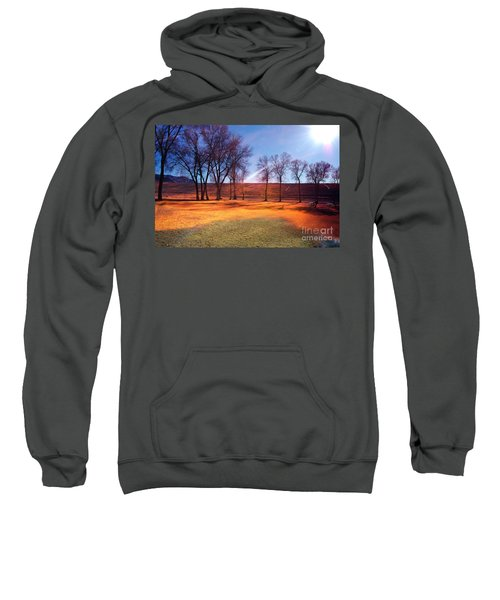 Park In Mcgill Near Ely Nv In The Evening Hours Sweatshirt