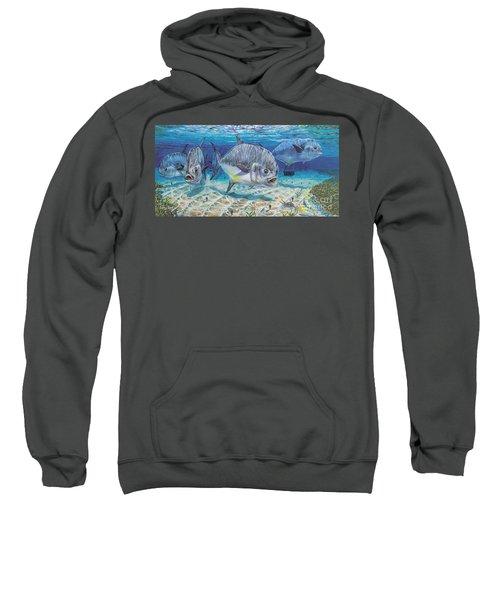 Passing Through In009 Sweatshirt