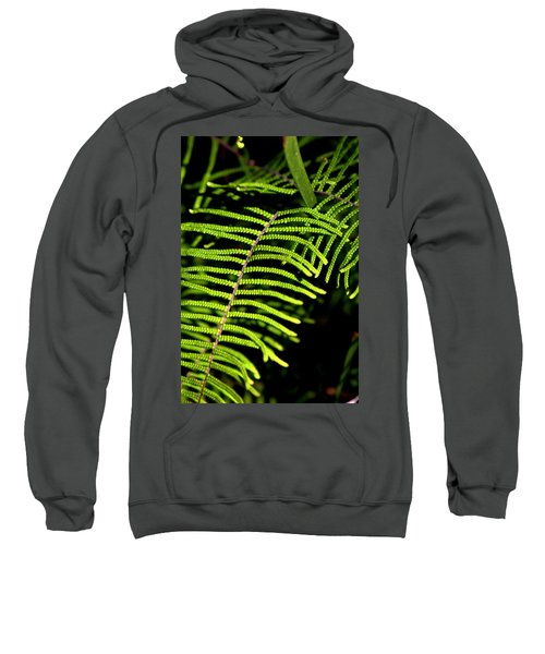 Sweatshirt featuring the photograph Pauched Coral Fern by Miroslava Jurcik