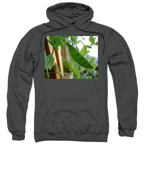 Pea Pod Growing Sweatshirt