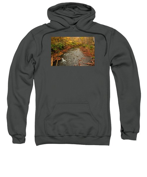 Peaceful Fall Sweatshirt
