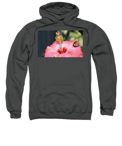 Peaceful Tingles - Signed Sweatshirt