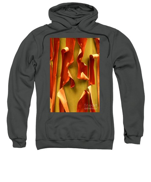 Peeling Bark Pacific Madrone Tree Washington Sweatshirt