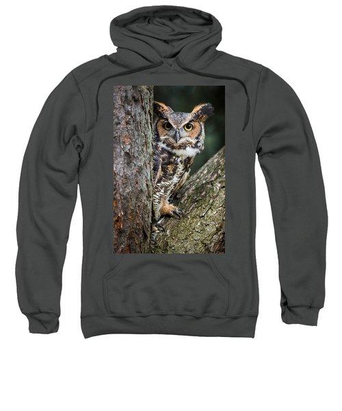 Peering Out Sweatshirt