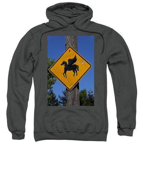 Pegasus Road Sign Sweatshirt by Garry Gay