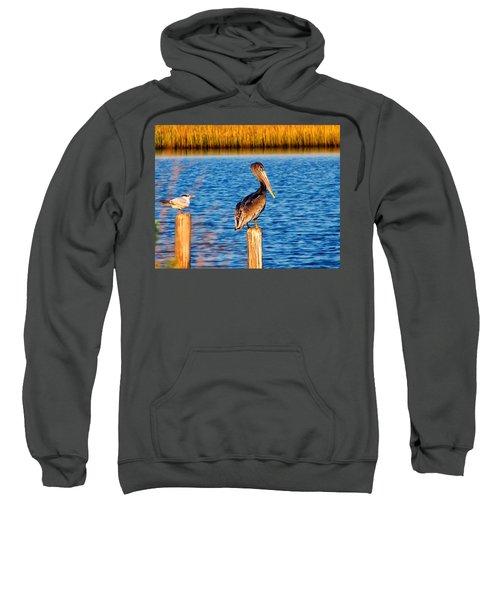 Pelican On A Pole Sweatshirt