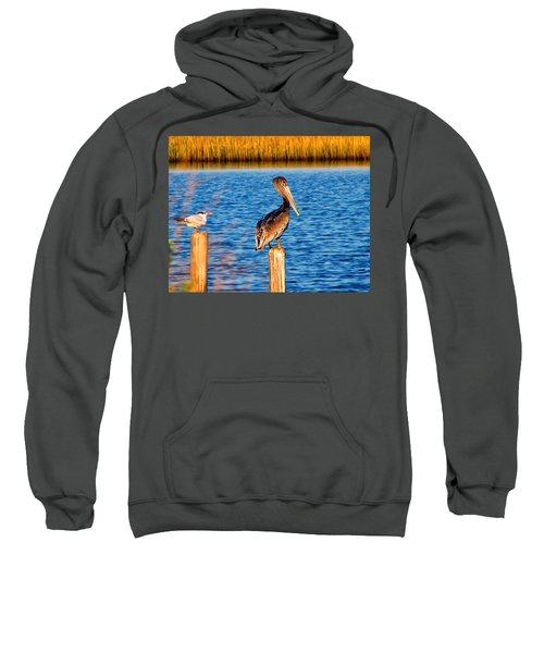 Pelican On A Pole Sweatshirt