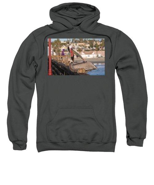 Pelican Sitting On Pier  Sweatshirt