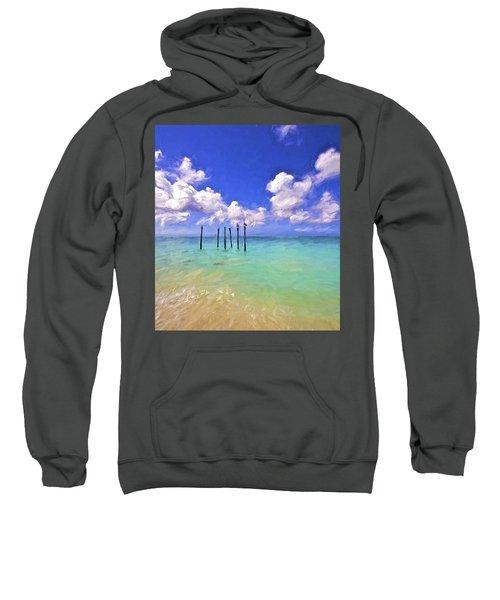 Pelicans Of Aruba Sweatshirt