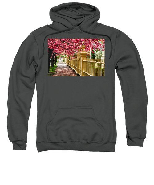 Perfect Time For A Spring Walk Sweatshirt