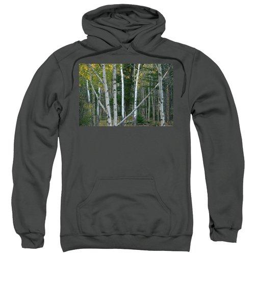 Perfection In Nature Sweatshirt