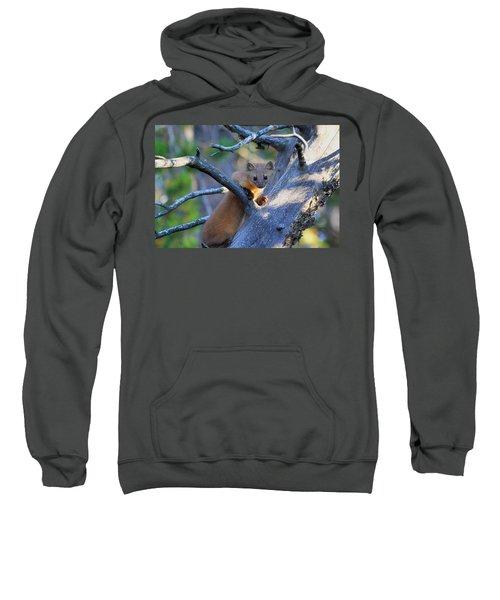 Pine Martin Sweatshirt