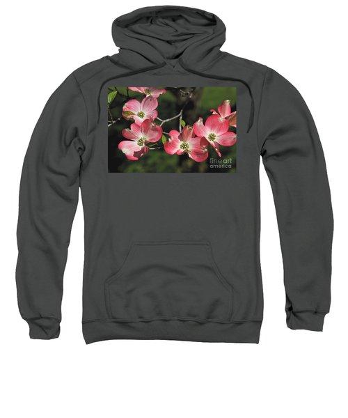 Pink Dogwood Sweatshirt