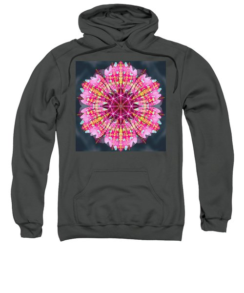 Pink Lightning Sweatshirt