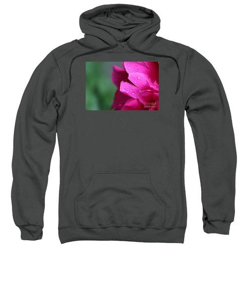 Pink Peony  Sweatshirt
