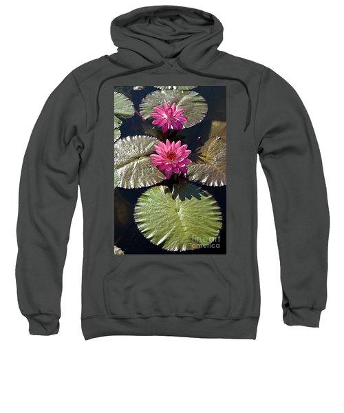 Pink Water Lily IIi Sweatshirt