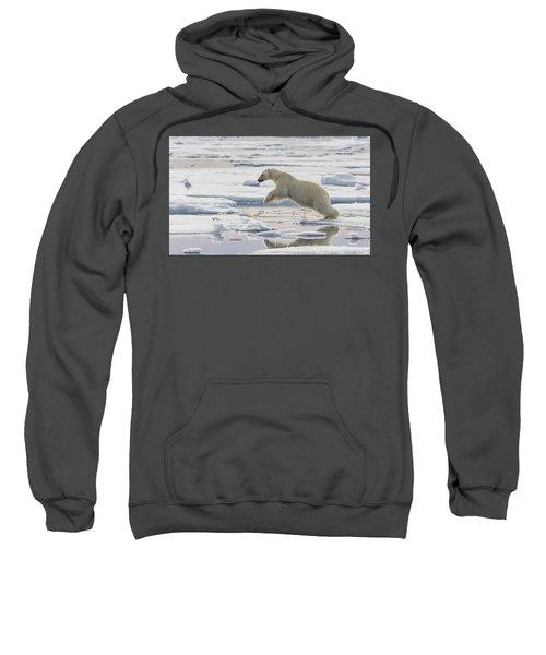 Polar Bear Jumping  Sweatshirt