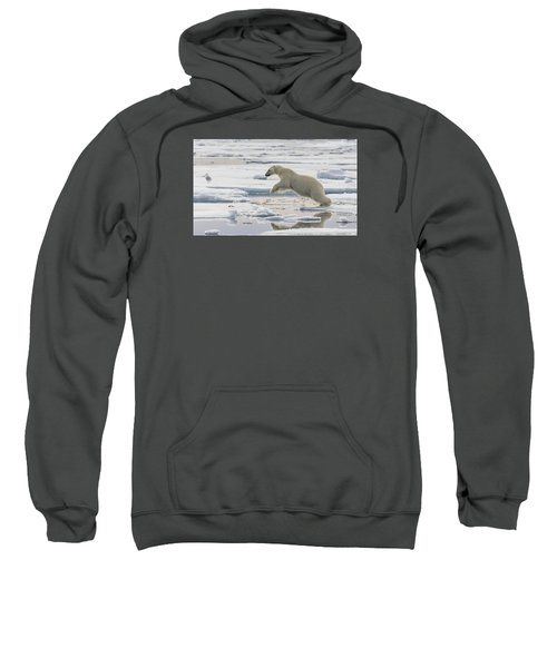 Polar Bear Jumping  Sweatshirt