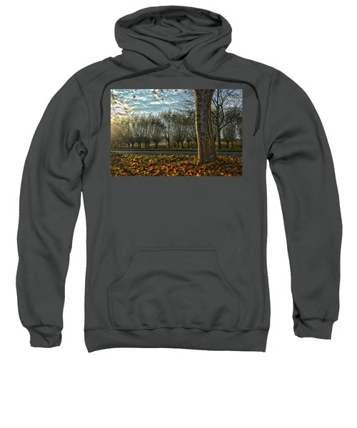 Pollard Willows In Rotterdam Sweatshirt