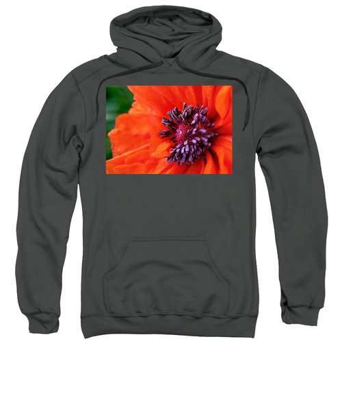Poppy's Purple Passion Sweatshirt by Bill Pevlor