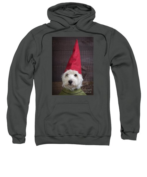 Portrait Of A Garden Gnome Sweatshirt