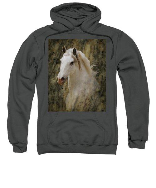 Portrait Of A Horse God Sweatshirt