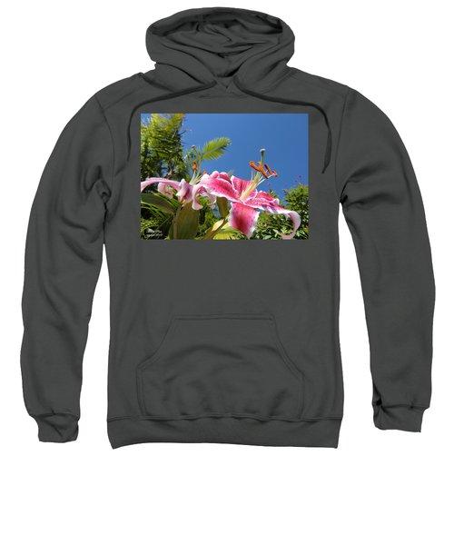 Possibilities Sweatshirt
