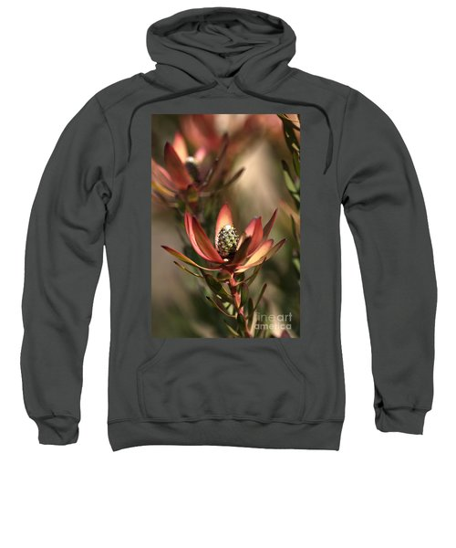 Protea  Sweatshirt