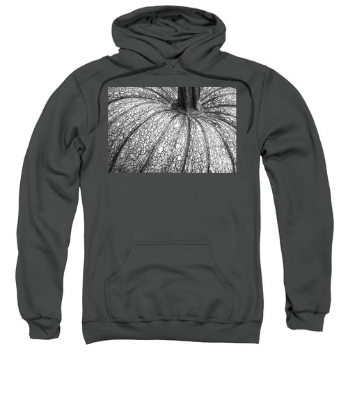 Pumpkin Pumpkin Black And White Sweatshirt