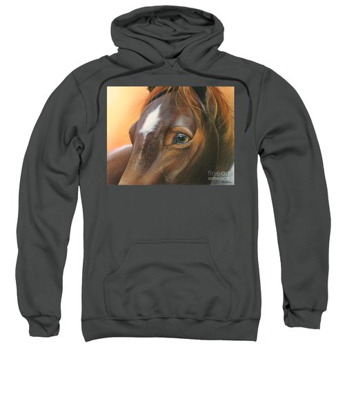 Pure Grace Sweatshirt