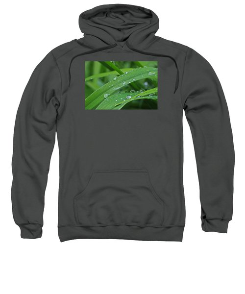 Pure Green Sweatshirt