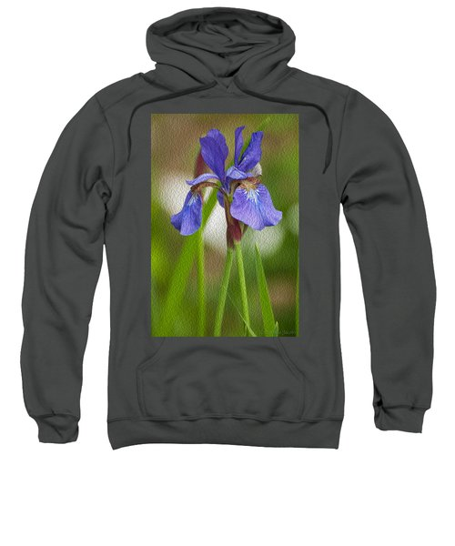 Purple Bearded Iris Oil Sweatshirt
