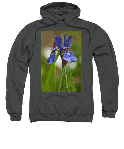 Purple Bearded Iris Watercolor With Pen Sweatshirt