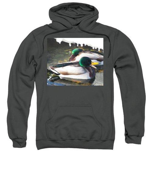 Quackin Ducks In Wisconsin Ice River Sweatshirt