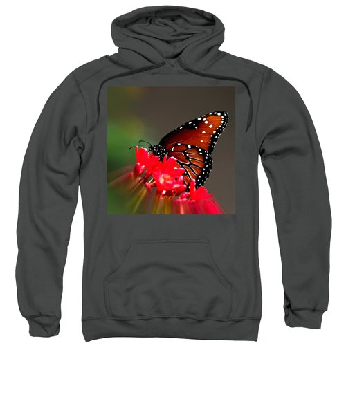Queen Butterfly II Sweatshirt