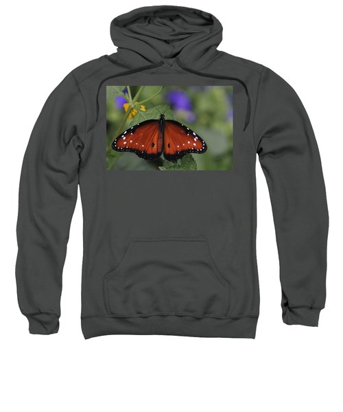 Queen Butterfly Sweatshirt