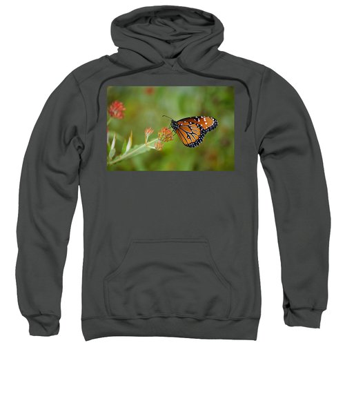 Quick Pose Sweatshirt