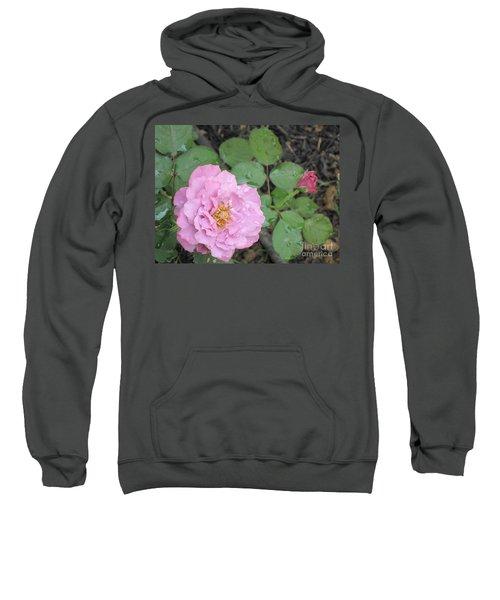 Rain Kissed Rose Sweatshirt