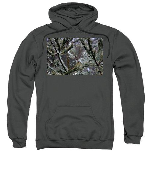 Rain On Pine Needles Sweatshirt
