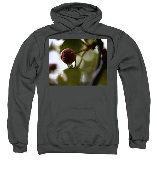 Raindrop Reflection 1 Sweatshirt