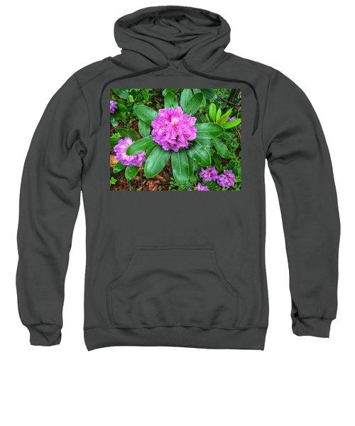 Rainy Rhodo Sweatshirt