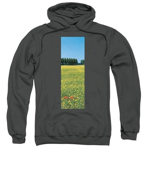 Rape Flowers France Sweatshirt